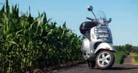 Мужчина получил срок за скутер в кукурузе